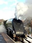 """Steam Train on Watercress Line"" by Jenny Gilleland"