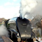 """Steam Train on Watercress Line"" by Jenny Gilleland"